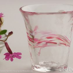 Glass Sake Cup Scattering Cherry Blossoms